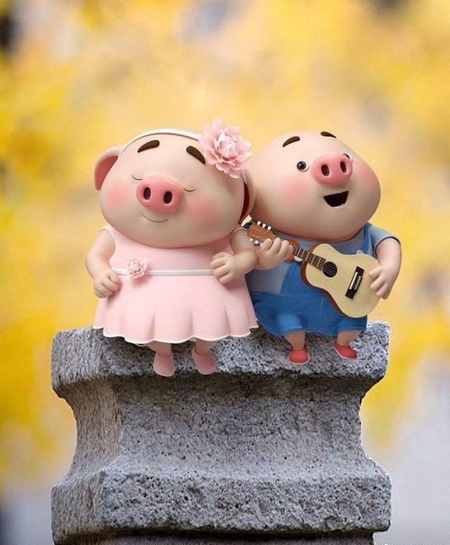 عکس پروفایل خوک های بامزه