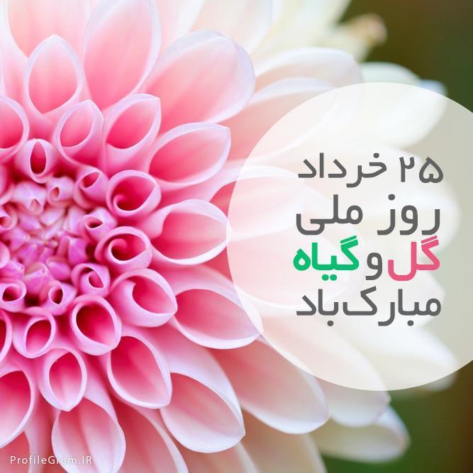 عکس پروفایل 25 خرداد روز گل و گیاه مبارک باد
