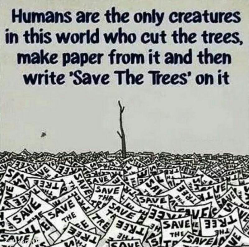 عکس پروفایل آدمها تنها موجوداتی تو این جهان هستن که درخت