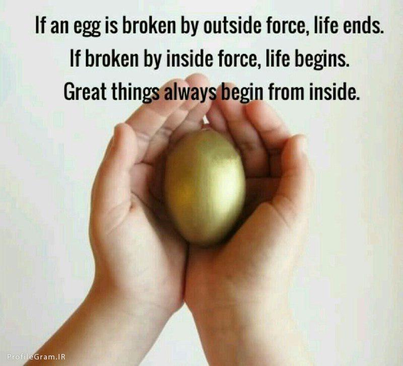 عکس پروفایل انگلیسی اگر یك تخم مرغ از بیرون بشكنهزندگیش تموم
