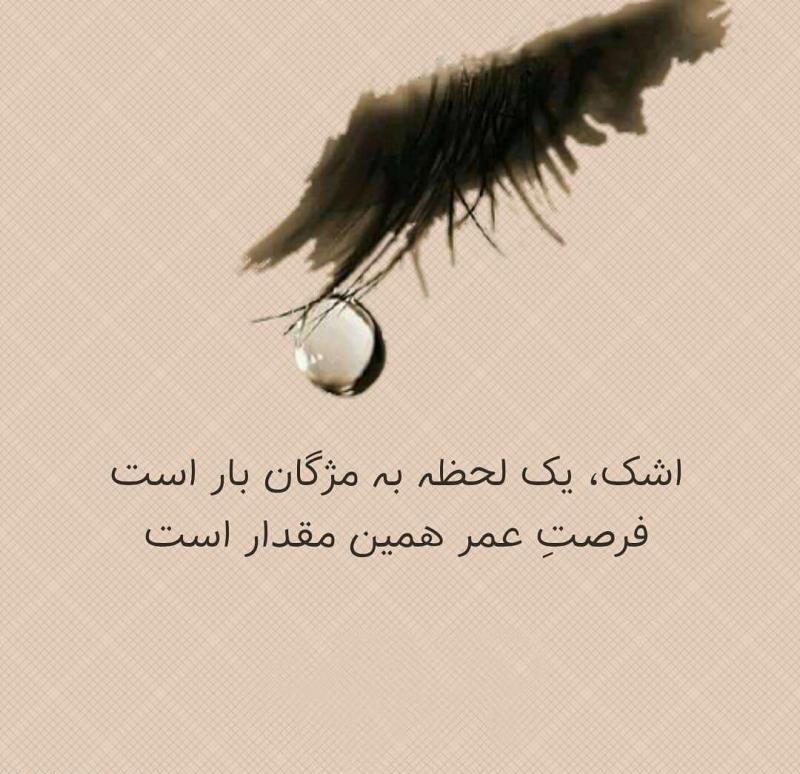 عکس پروفایل غمگین اشک یک لحظه به مژگان باز است فرصت عمر همین مقدار است
