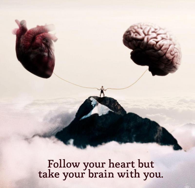 عکس پروفایل انگلیسی برو جایی که قلبت میگه ولی مغزت رو هم با خودت ببر