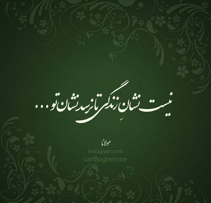 عکس پروفایل مولانا نیست نشان زندگی تا نرسد نشان تو