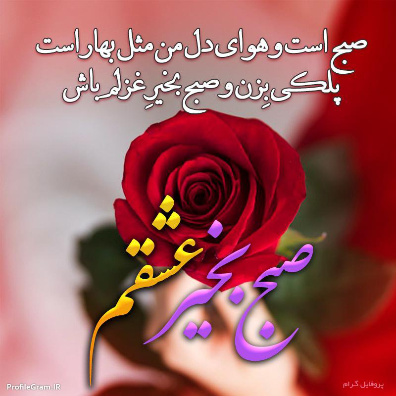 عکس نوشته صبح بخیر عشقم با شعر عاشقانه و گل