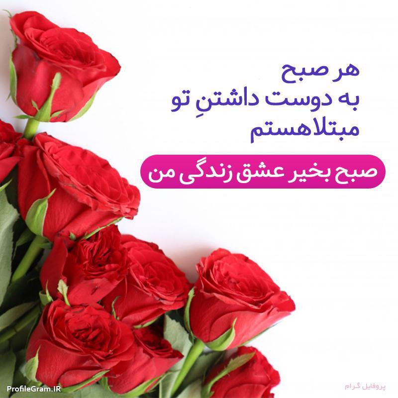صبح بخیر عشق زندگی من