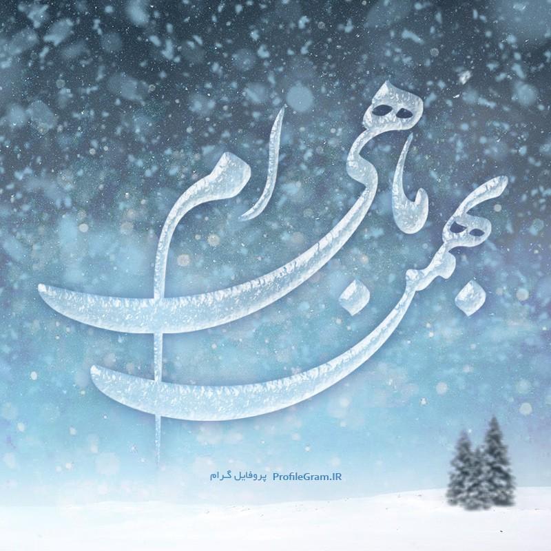 عکس پروفایل بهمن ماهی ام یخی و برفی