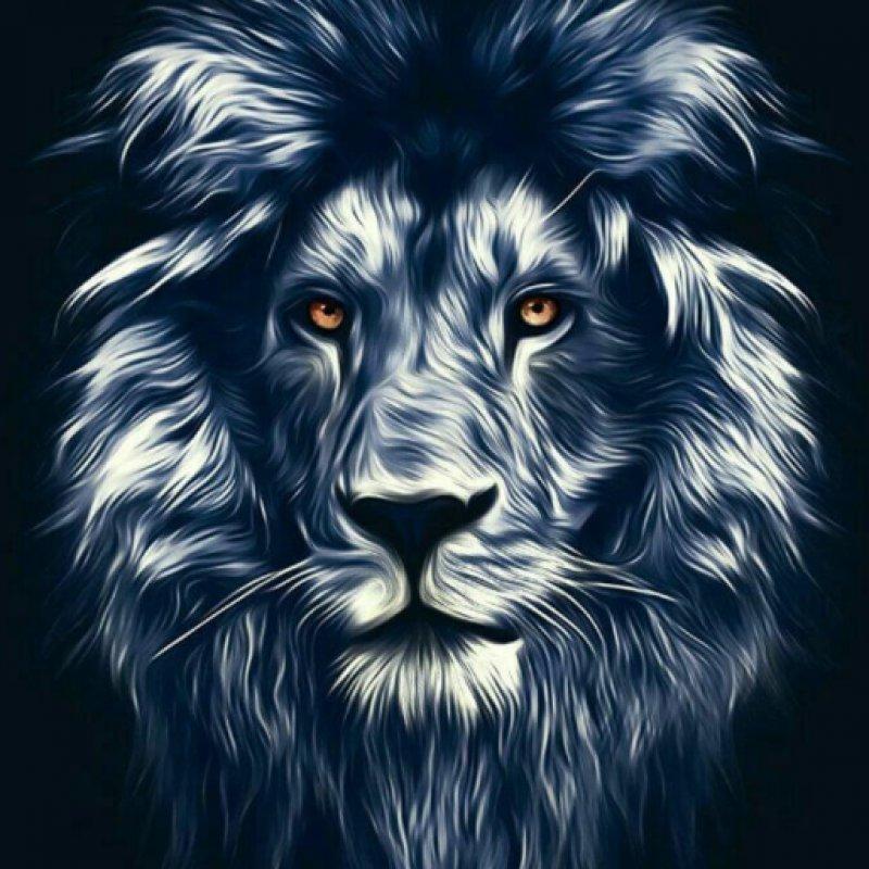 عکس پروفایل شیر سیاه سفید زیبا خفن