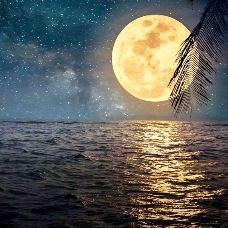 عکس پروفایل ماه روشن شب و دریای زیبا