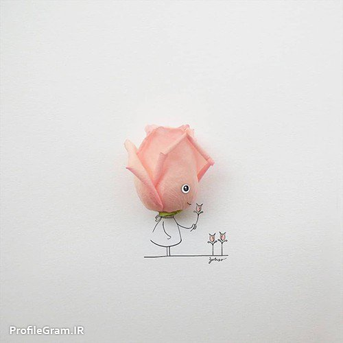 عکس پروفایل گل رز صورتی با نقاشی فانتزی