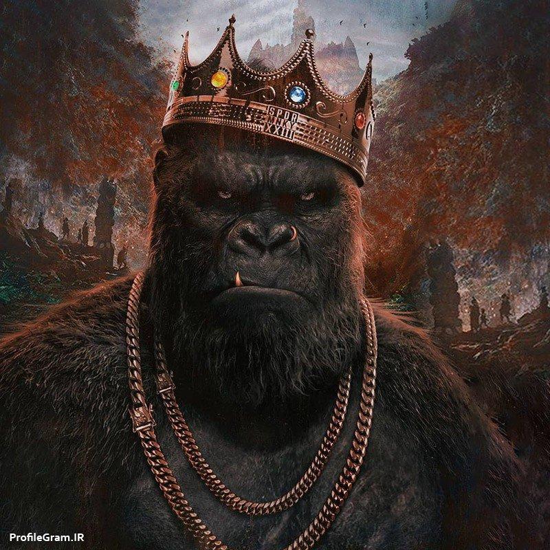 عکس پروفایل گنگ پسرونه میمون پادشاه با تاج و زنجیر طلا