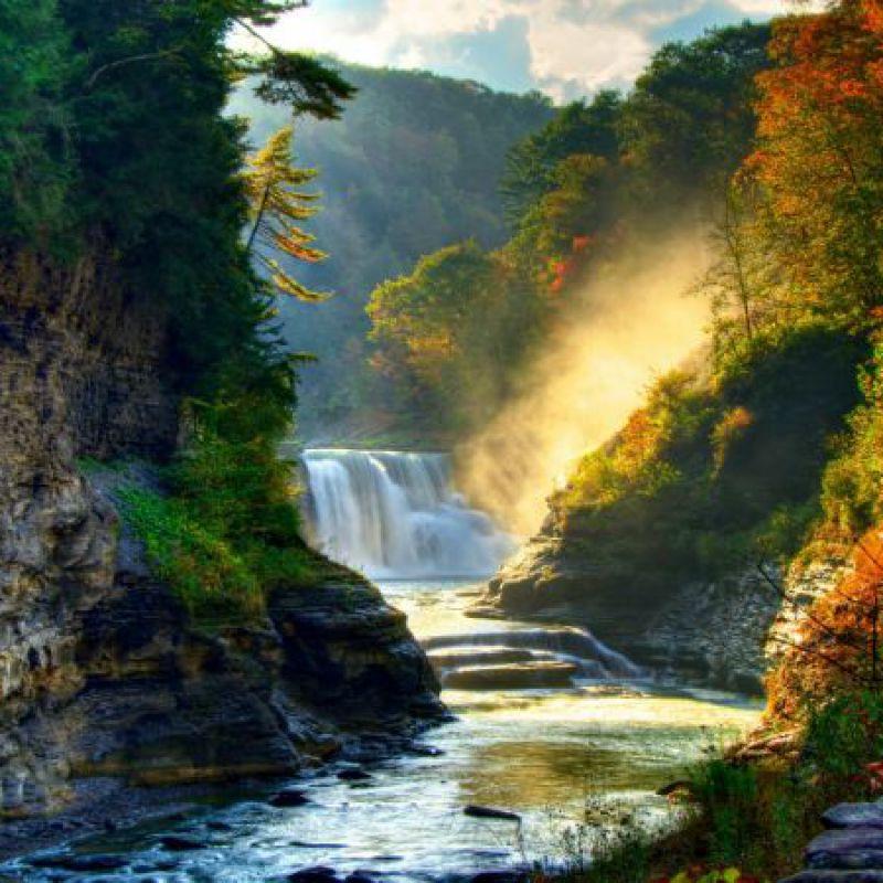 عکس پروفایل عکس پروفایل جنگل و طبیعت زیبا