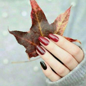 عکس پروفایل برگ درخت پاییزی