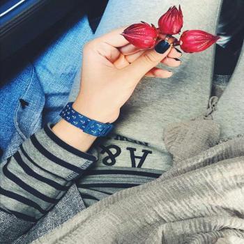 عکس پروفایل گل قرمز من