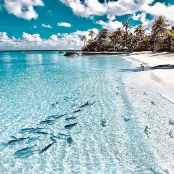عکس پروفایل دریای زیبا