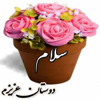 عکس پروفایل سلام دوستان عزیزم