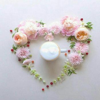 عکس پروفایل گل های رنگی زیبا