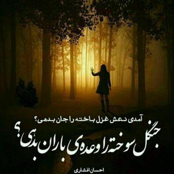 عکس پروفایل احسان افشاری