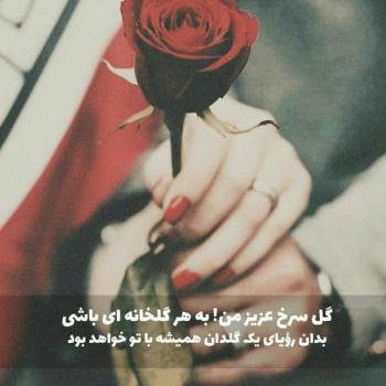 عکس پروفایل گل سرخ عزیز من