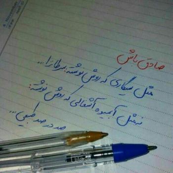 عکس پروفایل صادق باش