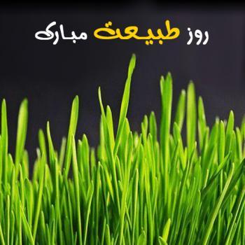 عکس پروفایل روز طبیعت مبارک سبزه