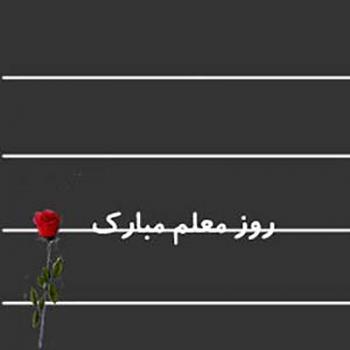عکس پروفایل تبریک روز معلم با یک شاخه گل رز