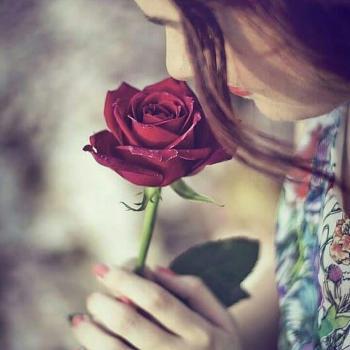 عکس پروفایل بوییدن گل رز