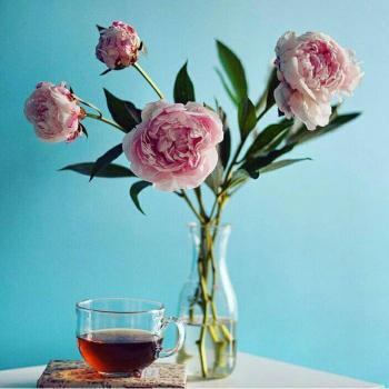 عکس پروفایل گل و لیوان چای