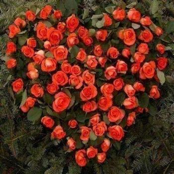 عکس پروفایل گل قلبی
