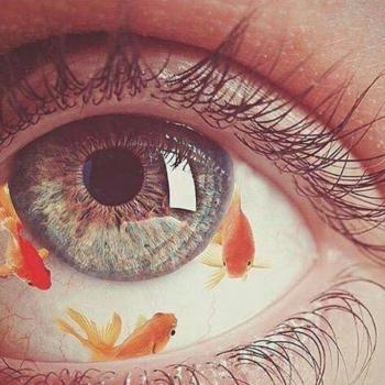 عکس پروفایل ماهی قرمز