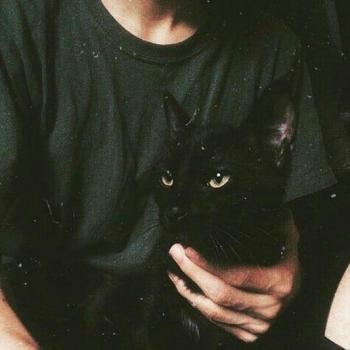 عکس پروفایل گربه سیاه