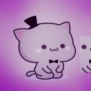 عکس پروفایل ست کارتونی گربه ای