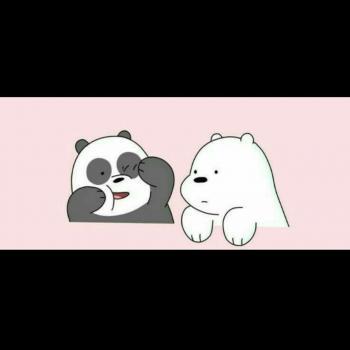 عکس پروفایل ست بامزه کارتونی خرس