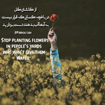 عکس پروفایل از کاشتن گل در باغچه کسانی که قرار نیست به آنها آب بدهند دست بردارید