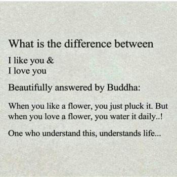 عکس پروفایل انگلیسی تفاوت دوستت دارم با عاشقتم چیه ؟