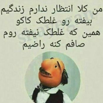 عکس پروفایل طنز آقای همساده غلطک