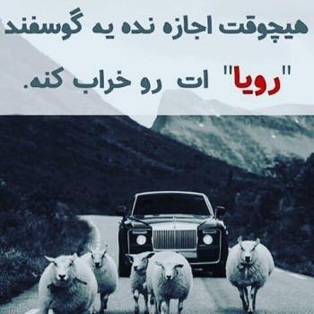 عکس پروفایل تیکه دار هیچ وقت اجازه نده یه گوسفند رویا ات رو خراب کنه