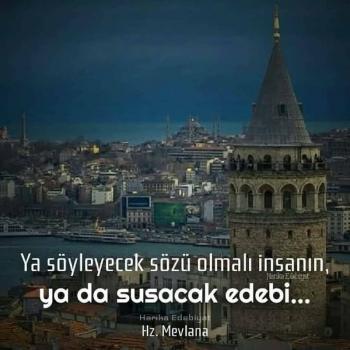 عکس پروفایل ترکیه ای انسان یا حرفی واس گفتن خواهد داشت و یا ادب