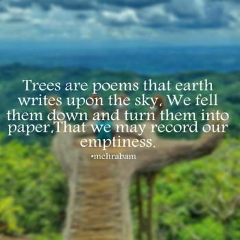 عکس پروفایل انگلیسی درختان اشعاری هستند که زمین بر آسمان نگاشته است