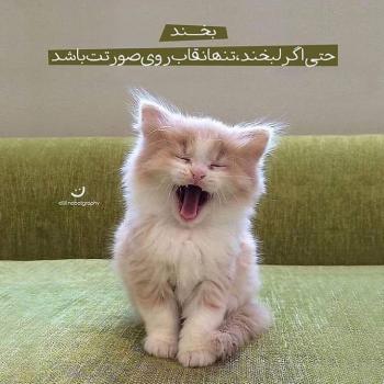 عکس پروفایل مثبت بخند حتی اگر لبخند تنها نقاب روی صورتت باشد