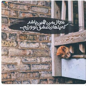 عکس پروفایل عاشقانه مجال من همین باشد که پنهان عشق او ورزم