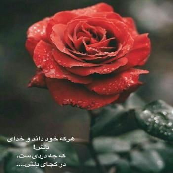 عکس پروفایل عاشقانه هر که خود داند و خدای دلش که چه دردیست در کجای دلش