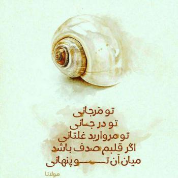 عکس پروفایل مولانا تو مرجانی تو درجانی تو مروارید غلتانی
