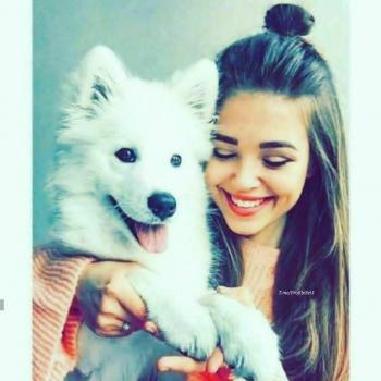 عکس پروفایل ست دختر همراه با سگ