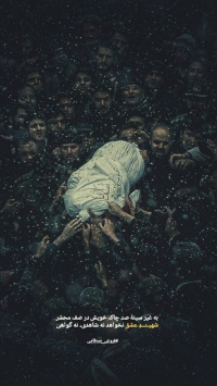 عکس استوری مذهبی شهید قهرمان وطن