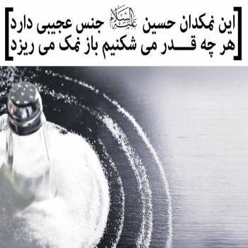 عکس پروفایل مذهبی اربابم این نمکدان حسین(ع)