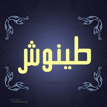 عکس پروفایل اسم طینوش طرح سرمه ای