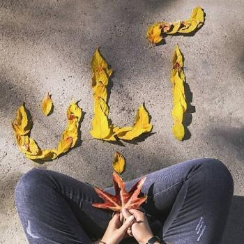 عکس پروفایل آبان و برگ های پاییزی زرد