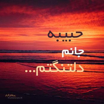 عکس پروفایل حبیبه جانم دلتنگتم