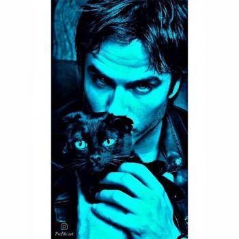 عکس پروفایل ست پسر گربه در بغل ترسناک