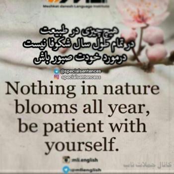 عکس پروفایل انگلیسی هیچ چیزی در طبیعت در تمام طول سال شکوفا نیست در مورد خودت صبور باش
